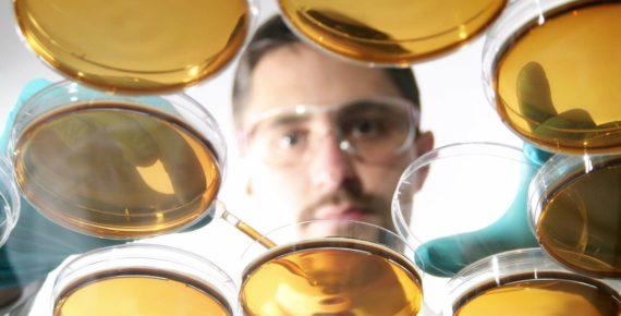 Синтетические базовые масла для моторных масел: виды и свойства